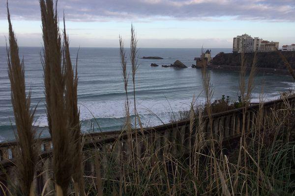 La côte des basques à Biarritz, spot historique du surf en Nouvelle Aquitaine