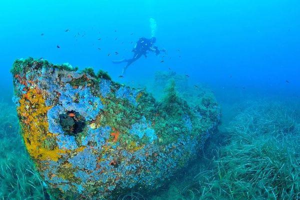La canonnière de Folelli fait partie des plus belles épaves sous-marines de Corse, selon les membres de Corse images sous-marines.