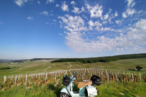 Un arrêt, au milieu des vignes, au-dessus d'Epernay, dans la marne.