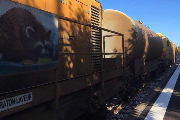 Un train laveur passe une fois par semaine sur la ligne Paris-Granville pour nettoyer les voies des feuilles mortes, causes de nombreux retards deux ans plus tôt