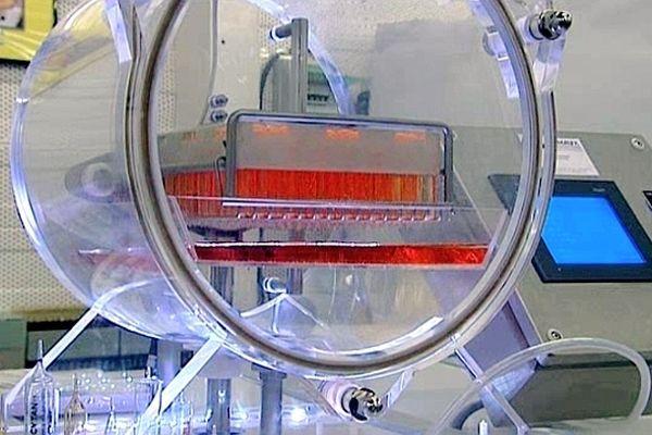 La PME familiale Deremeaux fabrique notamment des machines de remplissages d'ampoules médicales.