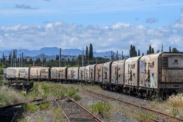Le train des primeurs, à l'arrêt en gare de fret de Perpignan, en juillet 2020.