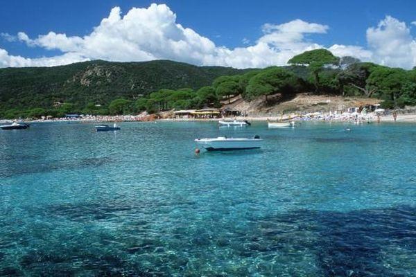 La plage de Palombaggia est seconde du classement des plus belles plages de France.