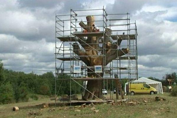 L'arbre monumental va retrouver une seconde jeunesse