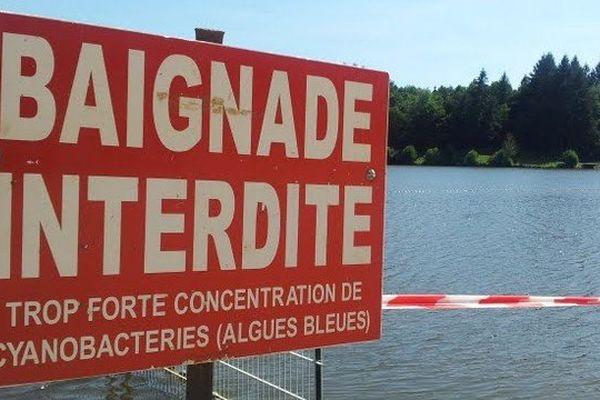 Plan d'eau interdit à la baignade