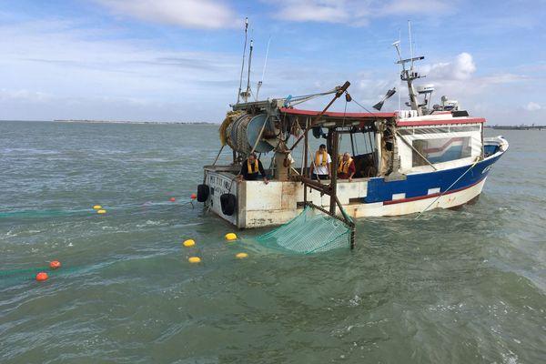 C'est grâce a ses filets latéraux que les bateaux de pêche peuvent collecter les polluants dans les filets spéciaux.