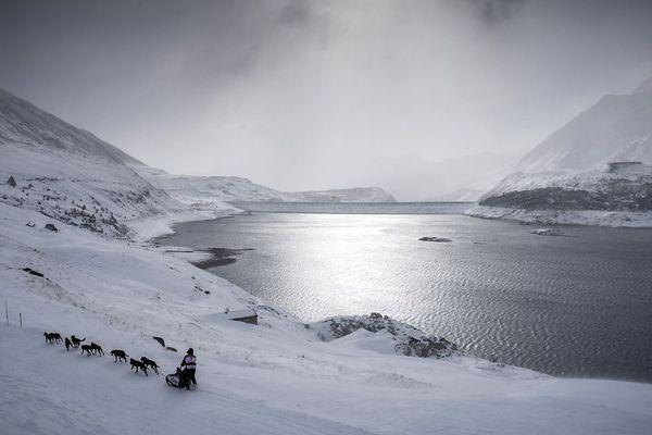 """Un musher et ses chiens de traîneaux courent une étape lors de la 12ème édition de la course de luge """"La Grande Odyssée"""" à travers les Alpes le 17 janvier 2016 à Val Cenis Lanslevillard."""