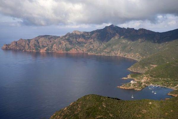 Dans une lettre ouverte adressée au conseil exécutif de Corse, l'association de défense de l'environnement demande la mise en place de quotas de fréquentation dans la réserve naturelle de Scandola.