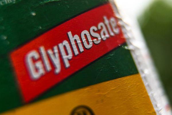 La première municipalité à avoir signé un arrêté anti-glyphosate est la ville de Langouët, en Ille-et-Vilaine, en mai dernier.