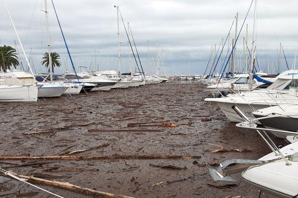 La quantité de bois est telle que les bateaux ne peuvent plus sortir du port de Saint-Laurent-du-Var.