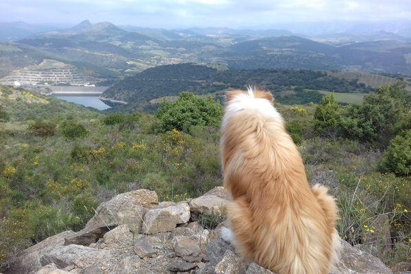 """Cassagnes, Pyrénées-Orientales, village des Fenouillèdes où est proposé un séjour sur le groupe Facebook """"L'étudiant et le bol d'air Occitanie"""" - 2021."""