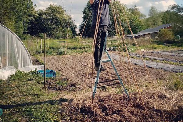 Baptiste Corbot pratique le maraîchage sur sol vivant dans son potager situé à Houlle dans le Pas-de-Calais.