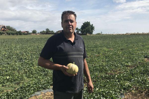 Martin Wilt s'est lancé l'an dernier dans la production de melons, à Saessolsheim