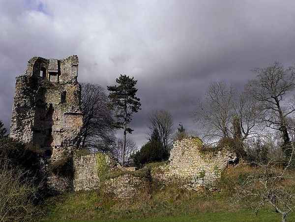 Château de Saint-Aubin-du-Cormier (35)