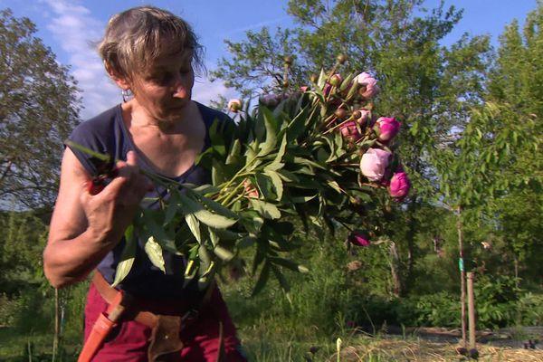 """Myriam Brenier du """"Jardin de Mimi"""" dans son champ de Pivoines"""