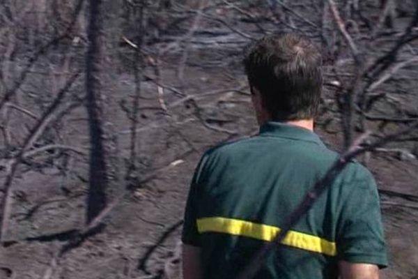 Comme à chaque fois depuis les grands incendies de 2003, elle est menée par la cellule Recherches des Causes et Circonstances des Incendies.