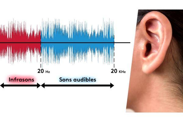 Les infrasons ne sont pas audibles par l'oreille humaine.
