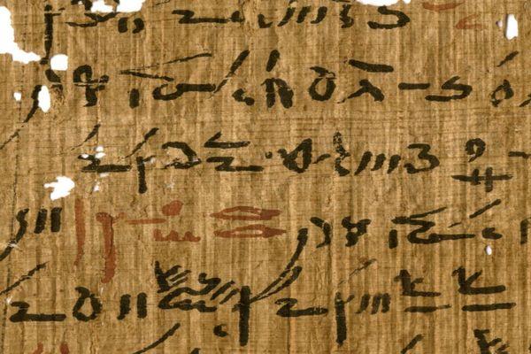 Détail d'un traité médical de la bibliothèque du temple de Tebtynis avec en-têtes marqués à l'encre rouge.