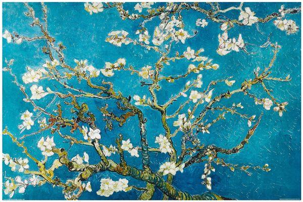Amandier en fleurs - Vincent Van Gogh - huile sur toile - (1890)  Musée van Gogh - Fondation Vincent van Gogh, Amsterdam (Pays-Bas)