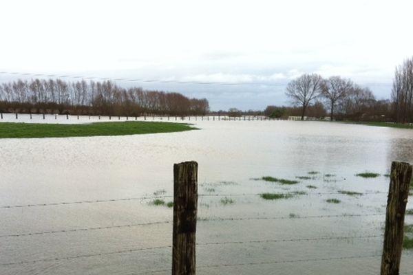 Les champs restaient largement engorgés aujourd'hui, à Calonne-sur-la-Lys.