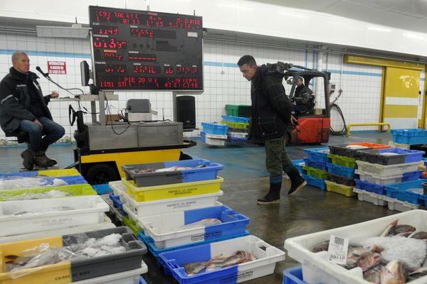 Le Guilvinec : les pêcheurs réclament au gouvernement une stratégie claire, pour développer davantage leur filière qu'ils estiment en danger
