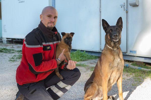 Une nouvelle recrue vient d'arriver au sein de l'équipe cynotechnique du Bataillon des marins-pompiers de Marseille
