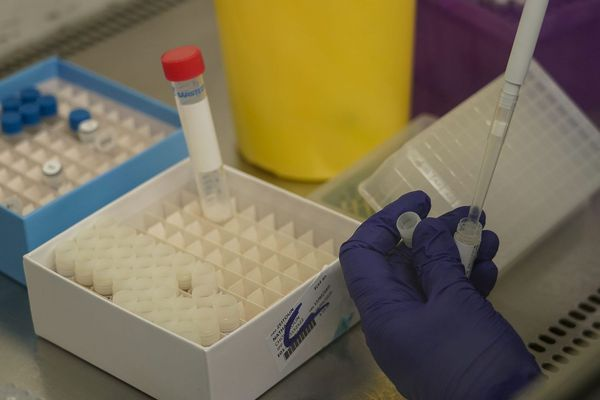 Des essais cliniques sont menés à base de chloroquine, un médicament antipaludique, pour traiter les malades du coronavirus Covid-19.