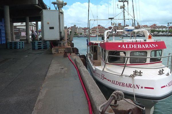 Dans le port de Ciboure, les bateaux repartent à la pêche au thon rouge.