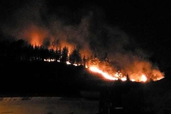 Gard : un incendie détruit 3 hectares de forêt à Beauvoisin - 11 août 2019.