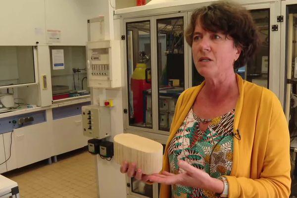 Au CNRS de Poitiers, Florence Epron est spécialiste de ces métaux rares.