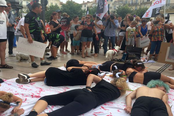 Béziers (Hérault) : double manifestation pro et anti corrida face à face avant la feria - 6 août 2019.
