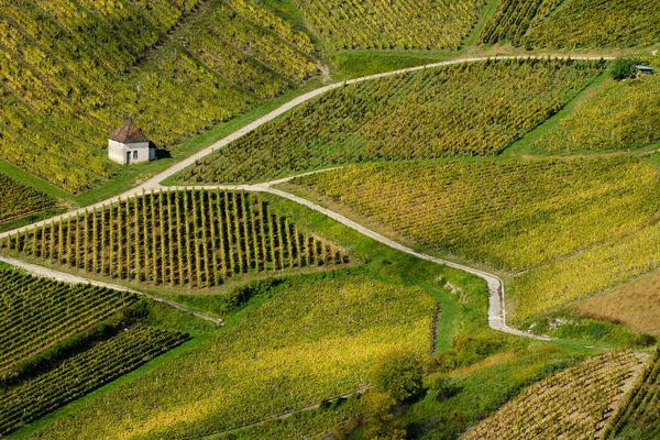 La Bourgogne-Franche-Comté terre viticole des vins de Beaune aux vins typés du Jura.