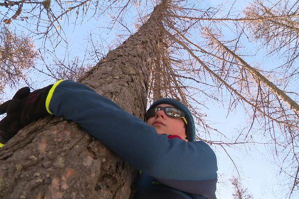 Faire un câlin à un arbre ferait baisser la tension artérielle.