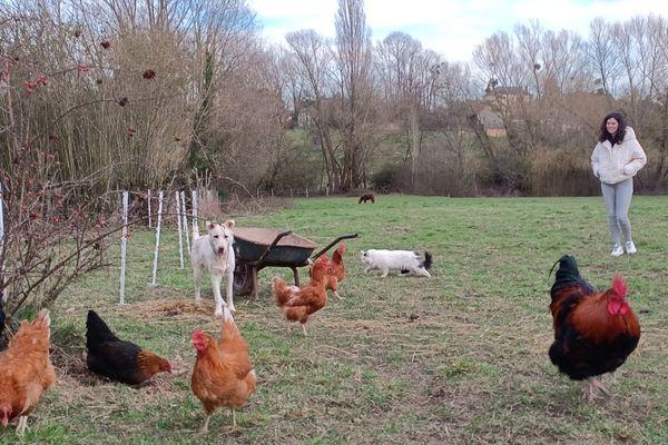 Théo et Marine ont désormais deux chats, un chien, un poney, six poules et un coq.