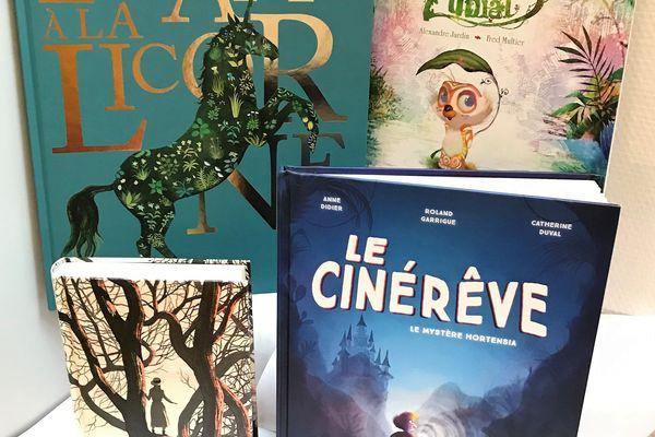 4 livres de rêve pour Noël