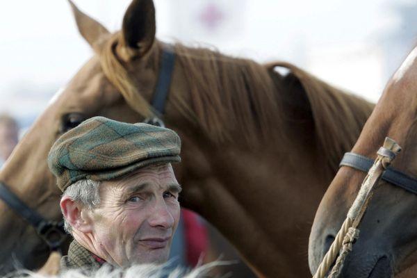 Depuis des siècles, les éleveurs normands vendent leurs chevaux à la foire de Lessay.