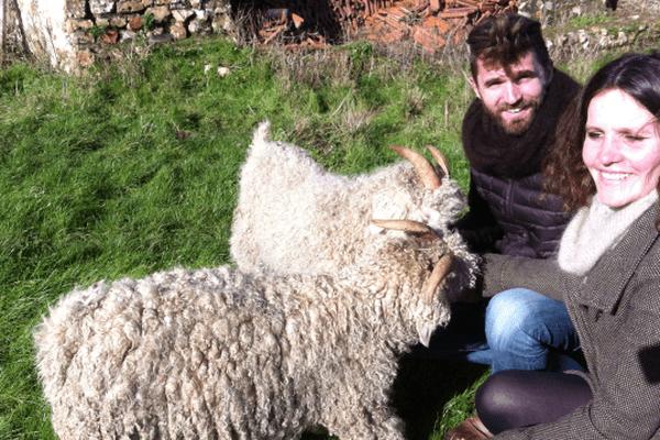 Romain et Fanny Cassaigne élèvent des chèvres angora à Saint-Ange-et-Torçay en Eure-et-Loir.