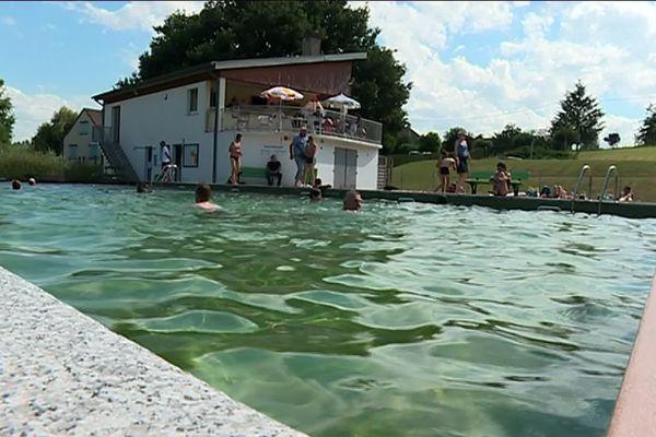 En Creuse, la piscine municipale de Marsac est entièrement naturelle.