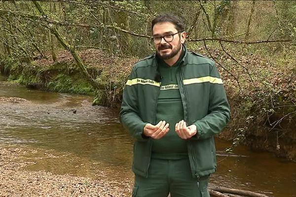 Mickaël Ricordel travaille à l'Office National des Forêts, il est aussi naturaliste, spécialiste des amphibiens