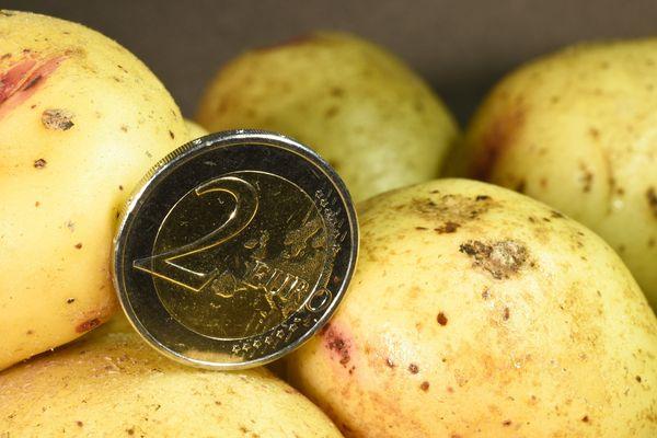 Image d'illustration, augmentation de 40% du prix moyen du kilo de pommes de terre en 2019