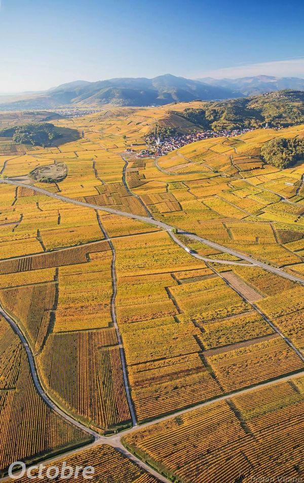 Les couleurs d'automne dans la Route des Vins d'Alsace.