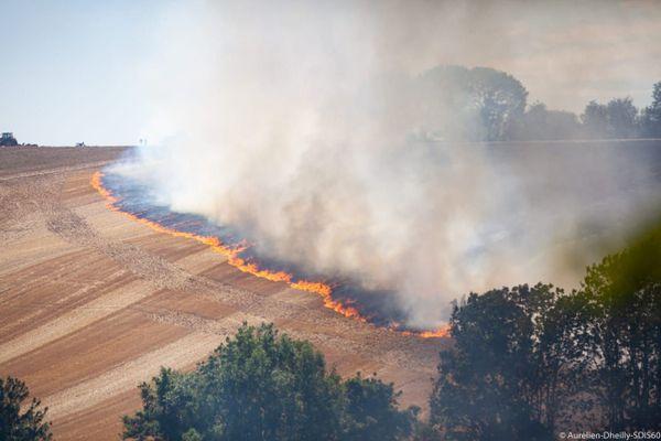 L'incendie s'est propagé sur une surface de 12 hectares en bordure du village du Mesnil-Théribus