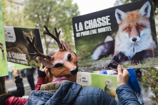 """Le collectif Un jour un chasseur, créé à la suite de la mort de Morgan Keane souhaite une modification de la législation sur la chasse qui ne garantit """"ni la sécurité, ni le bien-être"""" des habitants ruraux."""