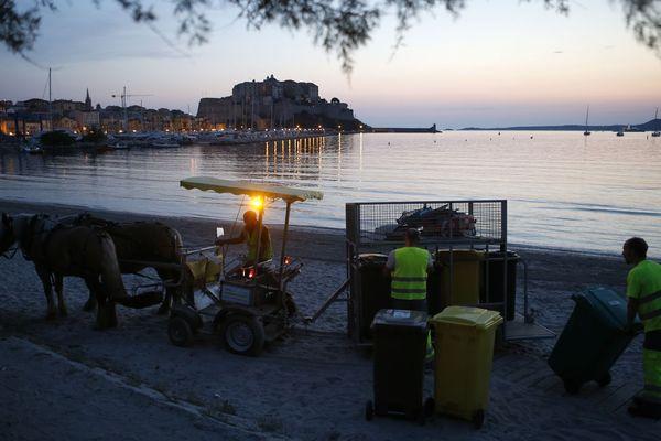 A Calvi (Haute-Corse), une hippomobile ramasse les poubelles des restaurants de plage.