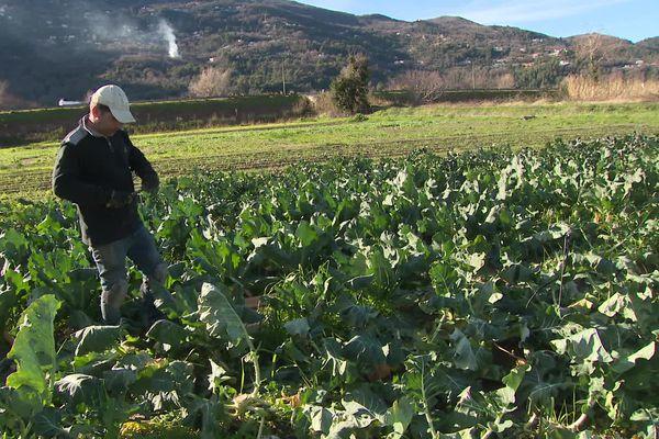 La mairie rachète des terres agricoles pour faciliter les circuits courts et aider des agriculteurs comme Franck Clere.