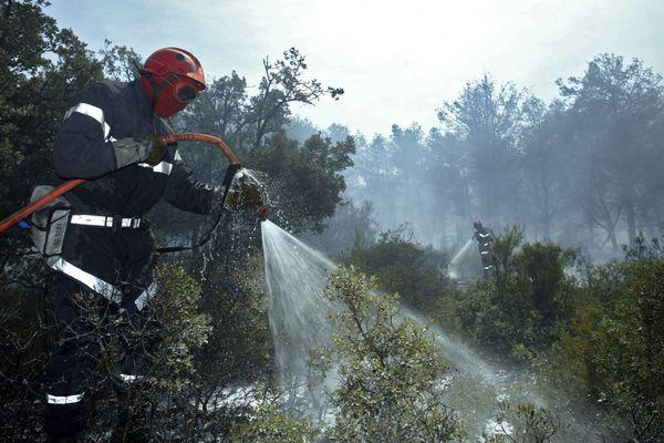 Les sapeurs-pompiers sont intervenus dans le massif de l'Arbois.