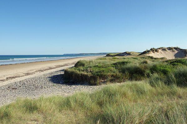 Dans le Cotentin, soleil matinal ce DIMANCHE sur les dunes de Beaubigny avant l'apparition des nuages.