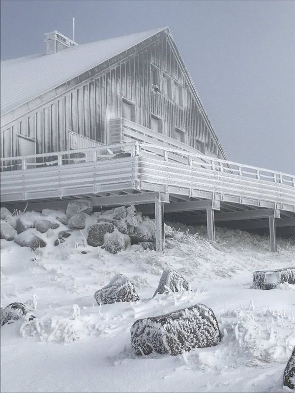 Les stations d'altitude sont désormais dans la neige. Comme ici à la Bresse-Hohneck.