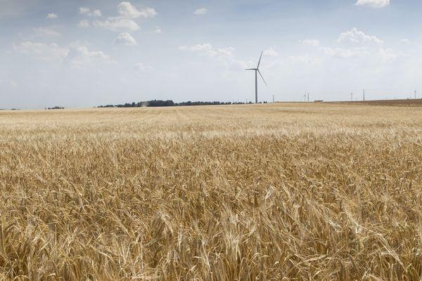 A la Croix-en-Brie en Seine-et-Marne, les habitant luttent contre un projet d'installation d'éoliennes.