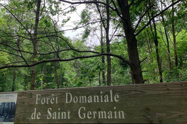 La forêt de Saint-Germain-en-Laye est interdite aux promeneurs depuis fin mars.